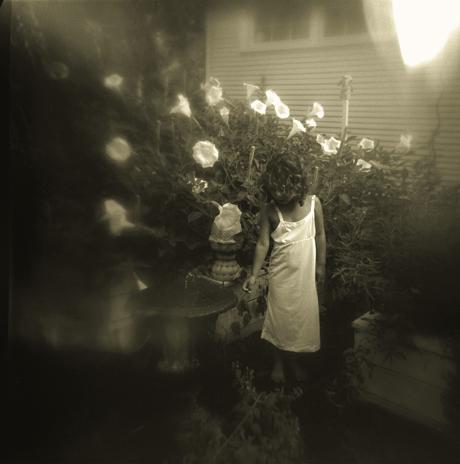 2_moonflowers