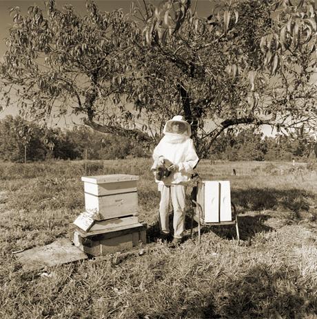 3B_Beekeeper_2